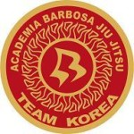 Finding a BJJ or MMA School in Korea