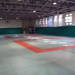 Korean College Judo Development Program