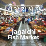 Korea Attractions: Jagalchi Fish Market Walking Tour