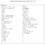 Learn Korean Lesson 3: Shopping Terminology and Counting (with all materials: PDFs, video, audio, lesson notes)